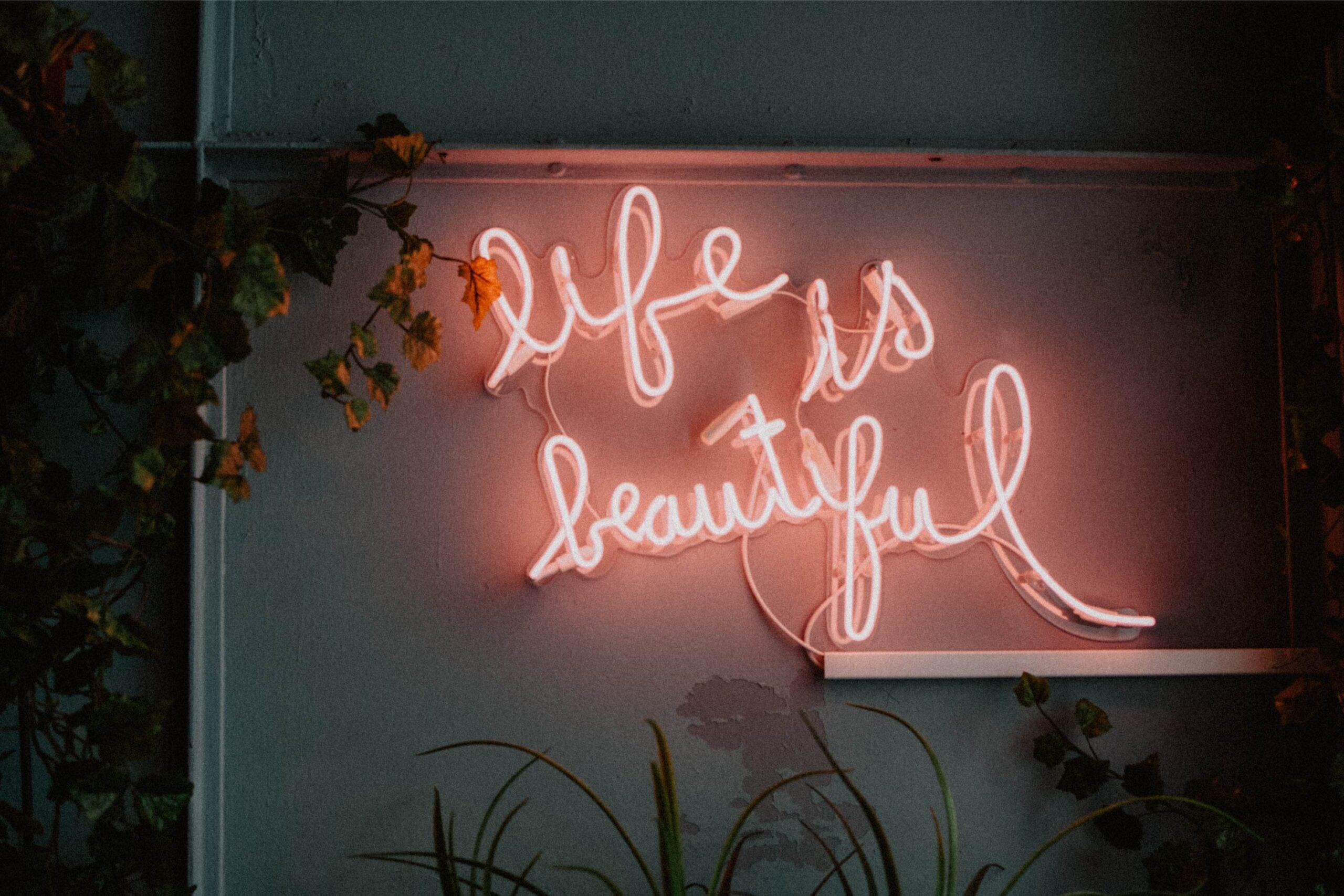 8946004323344_Katarzyna-Grabowska_Life is beautiful@0.5x-50