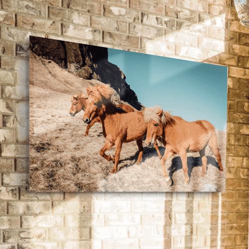 8946004323436_Alice Donovan_Wild horses_Mockup