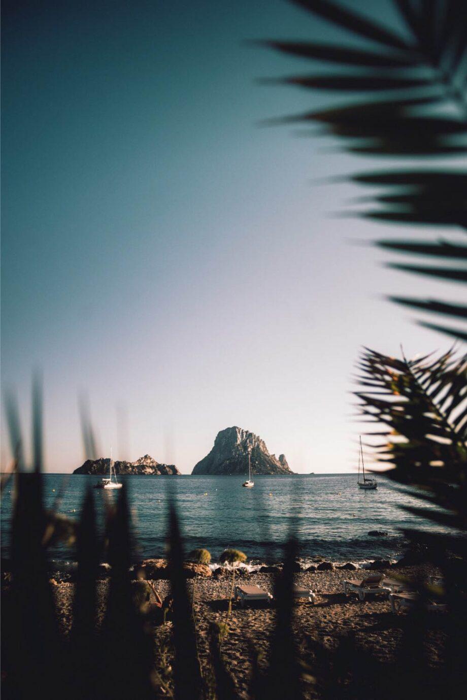 8946004323580_Jose Llamas_Happy island@0.5x-50