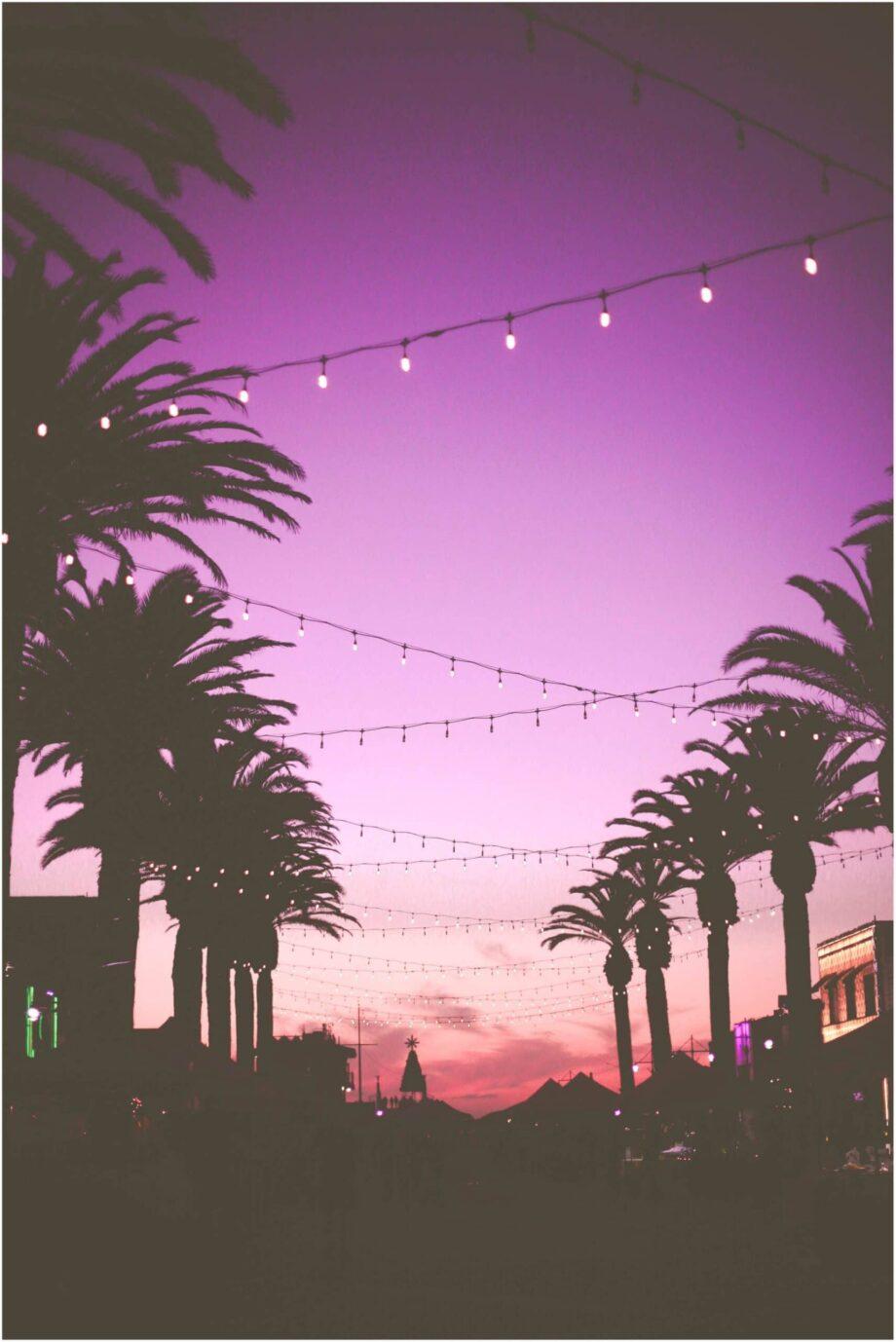 8946004323658_Marion Michelle_Miami Nights@0.5x-50