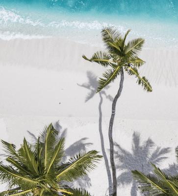 Beach-Vibe-min