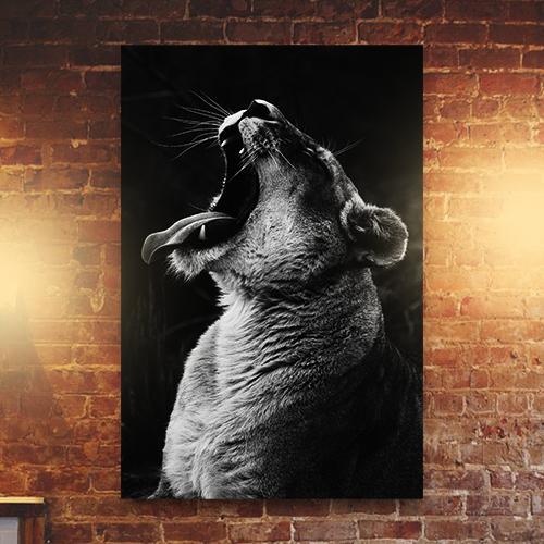 8946004323870_Isabella Juskova_Yawning lioness-Mockup