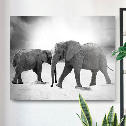 8946004323917_Photographer unknown_Elephant dance-mockup
